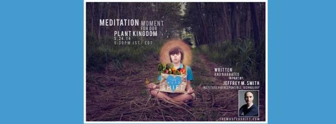 TMS Meditation Plant Kingdom